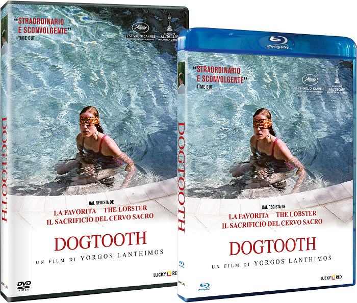 Dogtooth in home video
