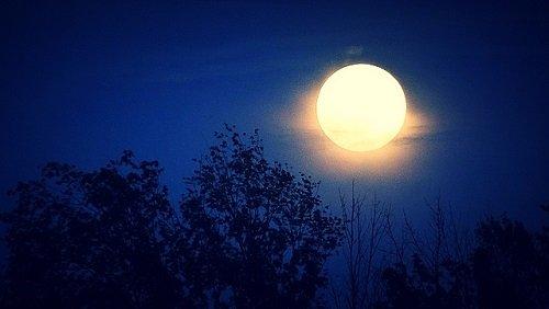 bad moon rising - un racconto horror di federico tadolini